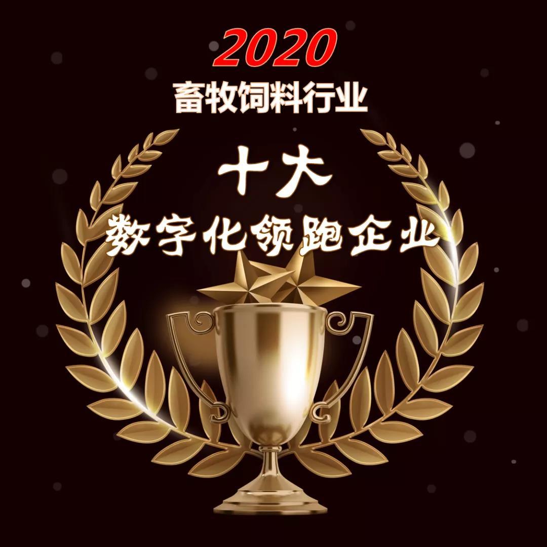 2020畜牧饲料行业四大奖项申报
