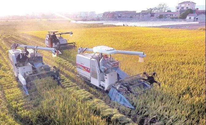 想在农村办家庭农场,怎么获得土地?