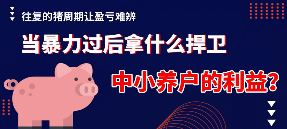 往复的猪周期让盈亏难辨,当暴力过后拿什么捍卫中小养户的利益?