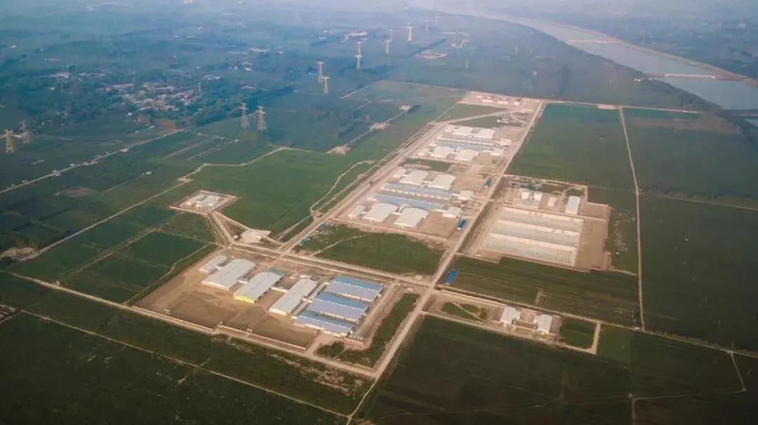 三季度业绩说明会上,中国大型养猪企业都怎么说?(二)