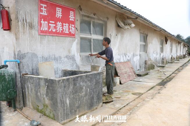 """铜仁玉屏杨柳村:洪老汉的养殖""""致富经"""""""