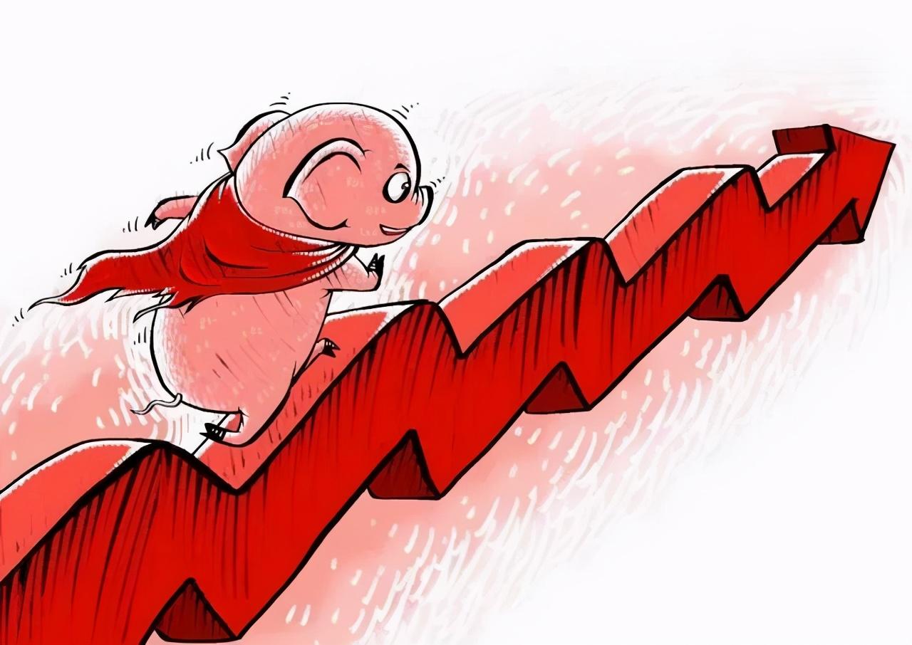 11月17日20公斤仔猪价格企稳,猪价反弹,带动仔猪交易权重上升?
