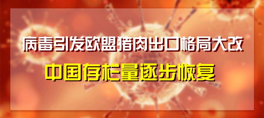 病毒引发欧盟猪肉出口格局大改,中国存栏量逐步恢复