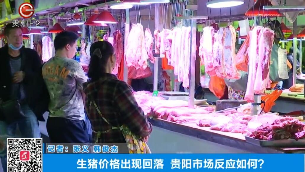 生猪价格出现回落,贵阳市场反应如何?