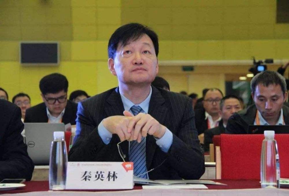 河南4大富豪,财富最低者为176亿,秦英林以1474亿排第一