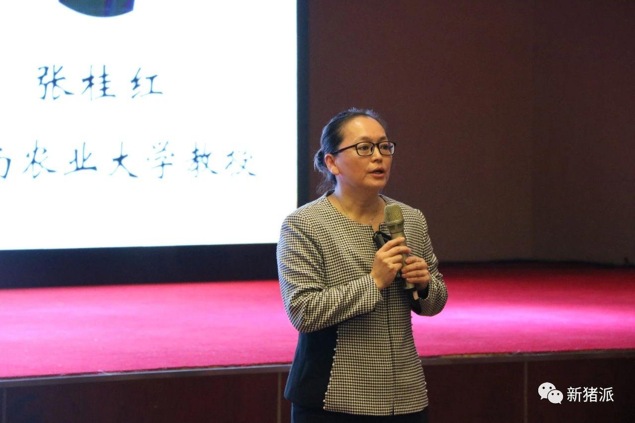 华南农业大学兽医学院教授、新农人学院首席兽医官特训营首席导师张桂红