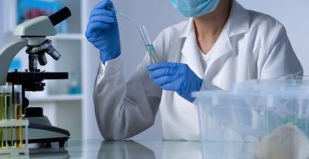 新兽药研发流程的四个阶段!后续安全性如何,怎么判定?