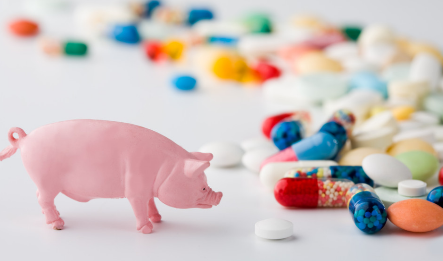智牧国际观察:英国计划进一步减少农场动物抗生素使用