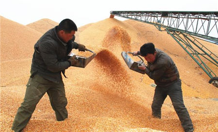 11月27日全国豆粕价格行情,豆粕易涨难跌,仍具有上行空间!