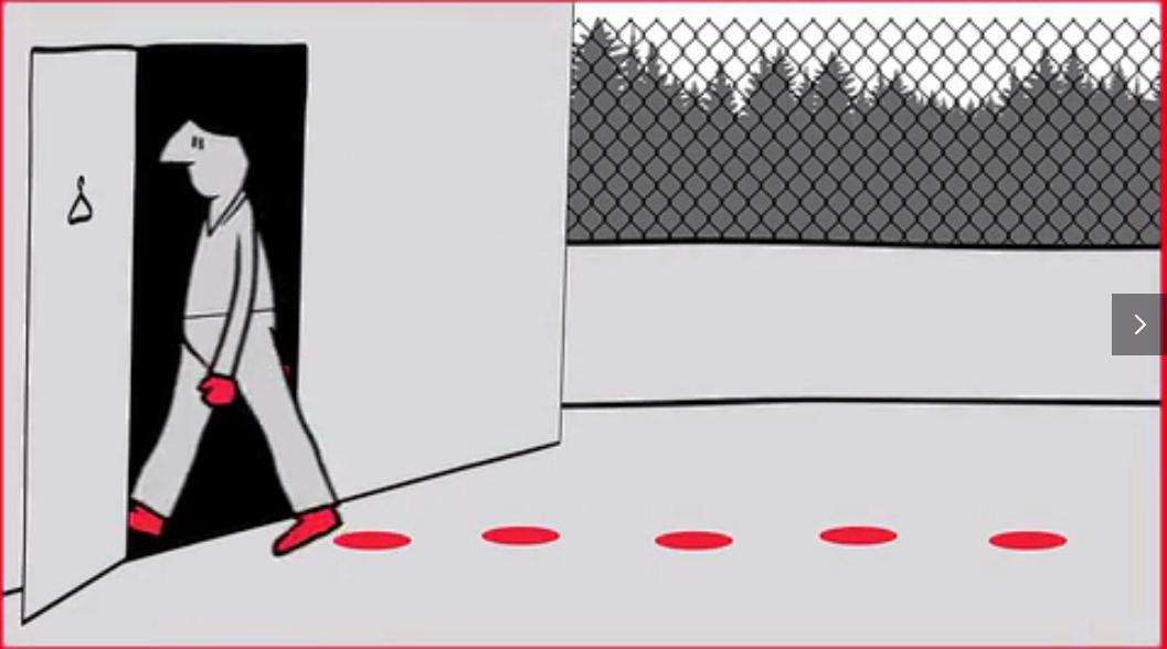 """猪场生物安全无小事:一图秒懂""""猪场入口""""如何做好安全进场"""