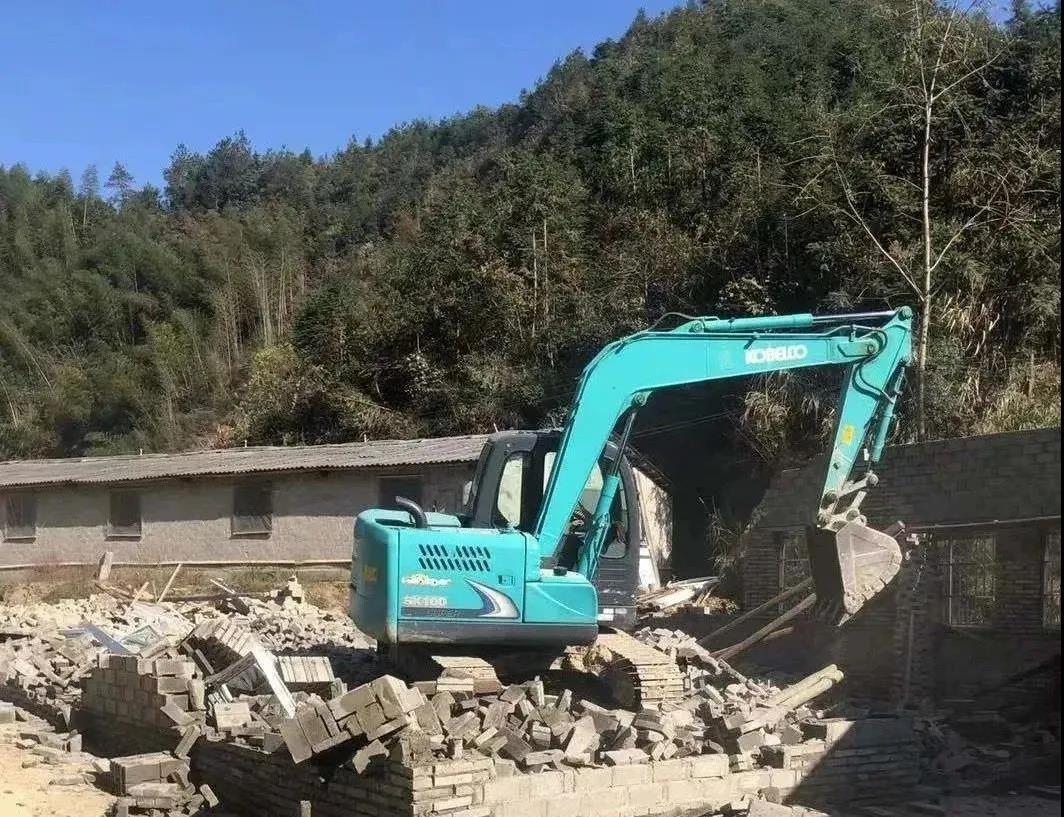 【控违拆违进行时】560多平方米猪场被依法、强制拆除!
