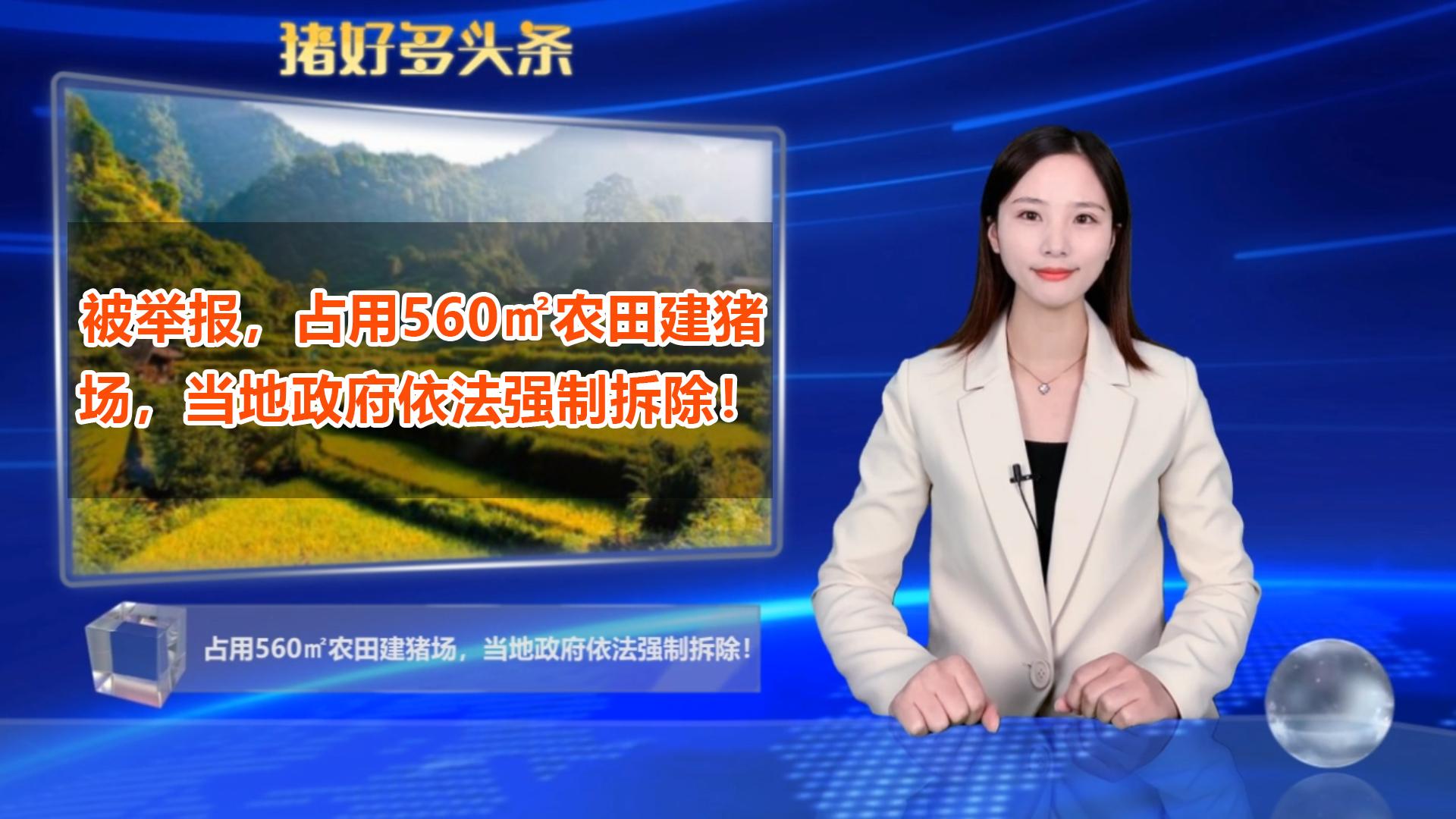被举报,占用560平方米农田建猪场,当地政府依法强制拆除!