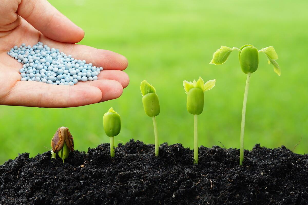 拉尼娜75%能到明年3月,会对农业产生哪些影响,农民作何准备