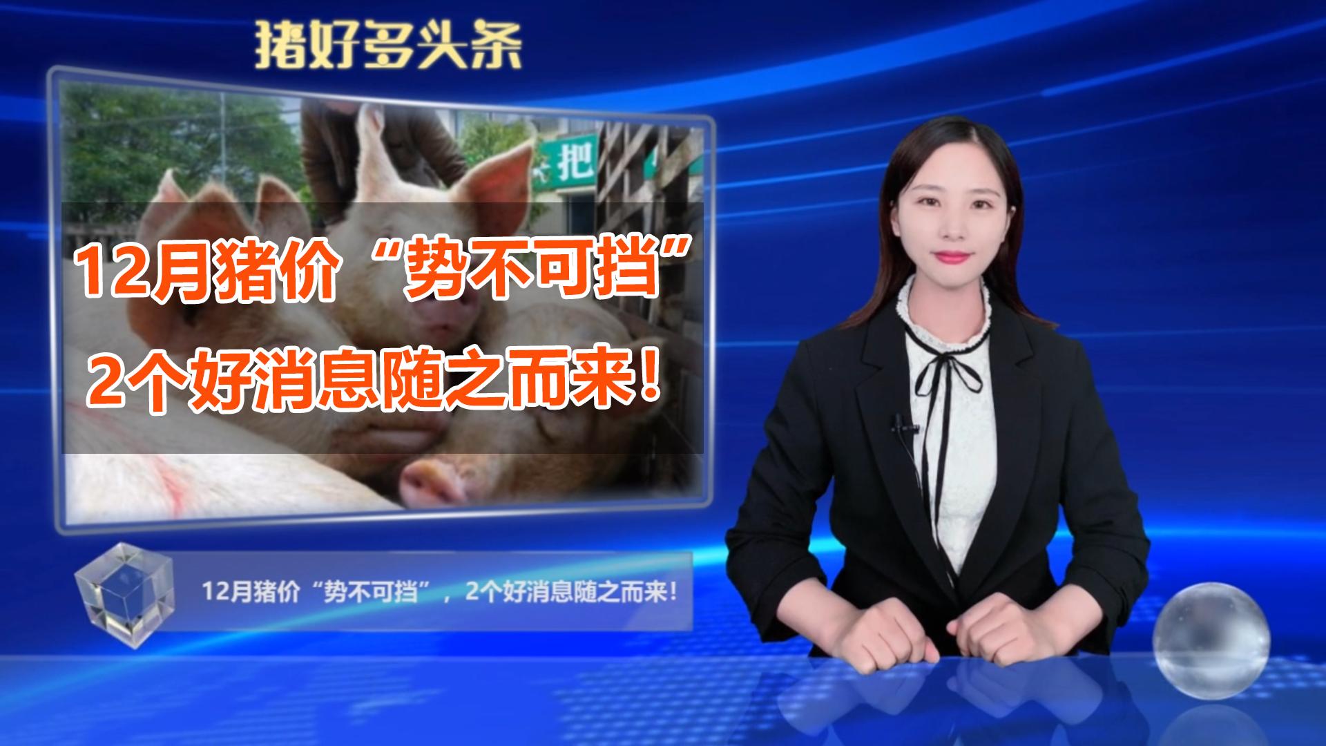 """12月猪价""""势不可挡"""",猪肉进口缩水,2个好消息随之而来!"""
