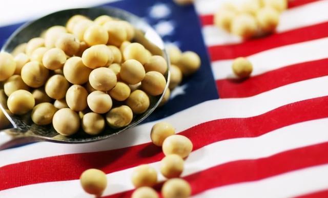 美大豆价格猛涨成烫手山芋,中国买家计划取消采购,与俄达成合作