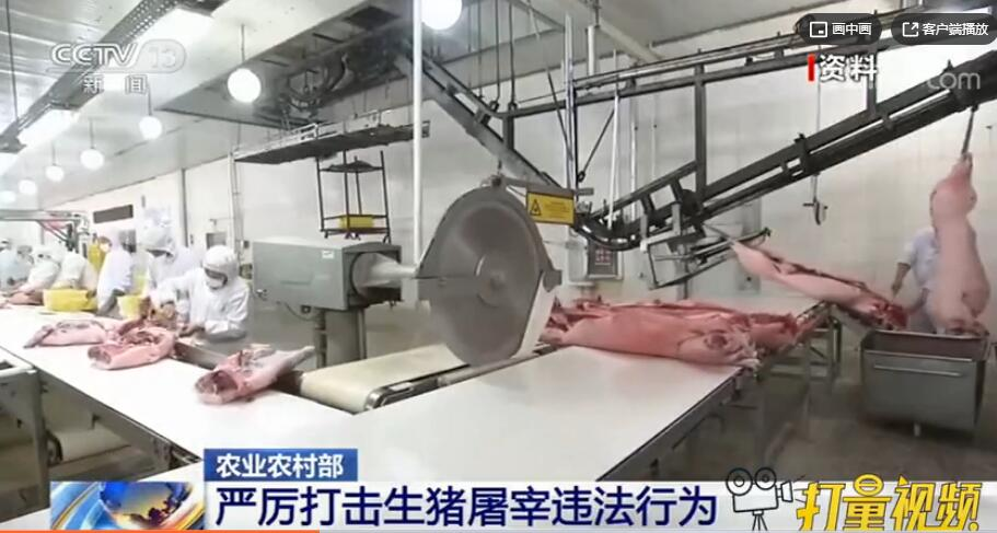 农业农村部:严厉打击生猪屠宰违法行为,维护行业秩序