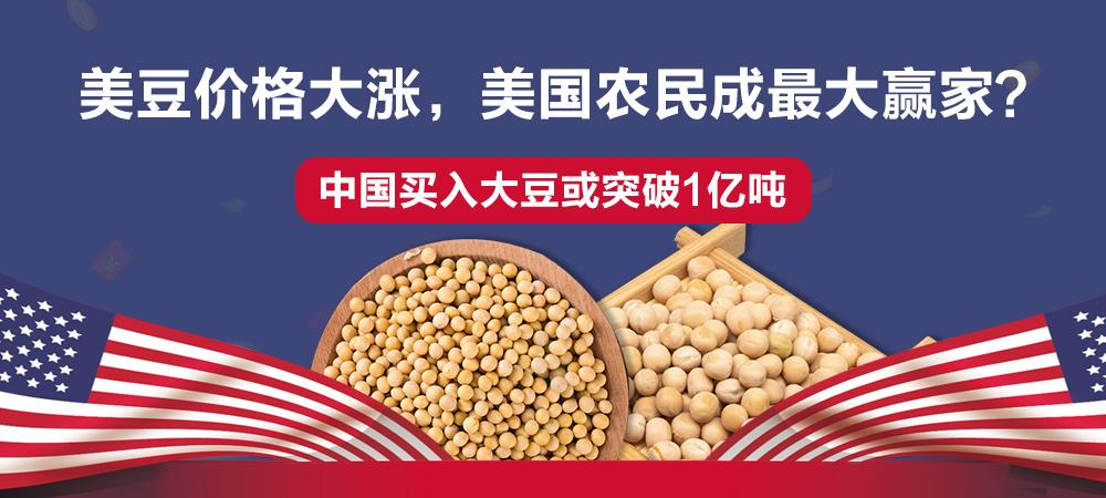 中国买入大豆或突破1亿吨!美豆价格大涨,美国农民成最大赢家?
