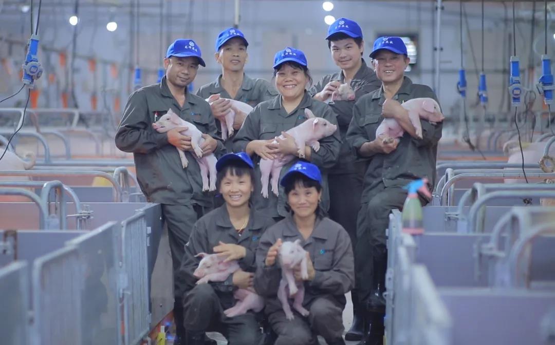 动物营养迈入智能优化新时代,可实现3大目标!