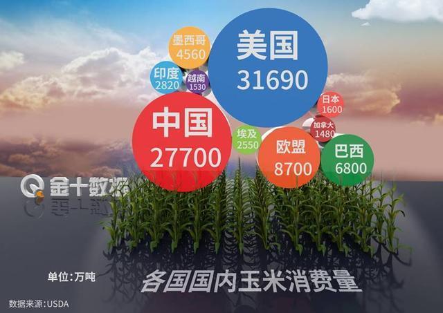 """玉米价格创6年新高!中国仍进口904万吨,有望破解大豆""""卡脖子"""""""
