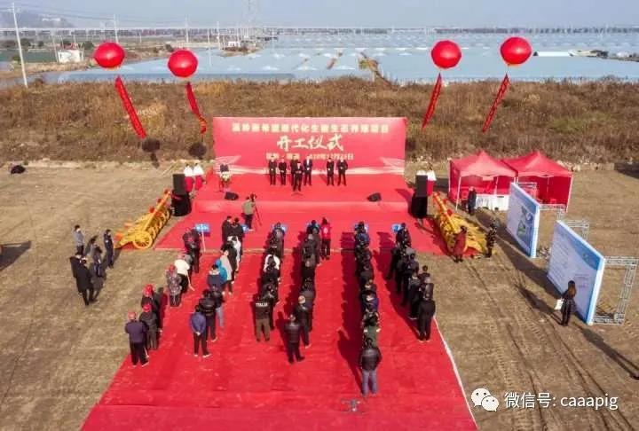 新希望:台州市最大规模养猪场开工,年出栏生猪可达22.5万头!