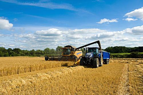 """四大粮商ABCD""""控制""""全球70%粮食市场,对中国影响有多大?"""