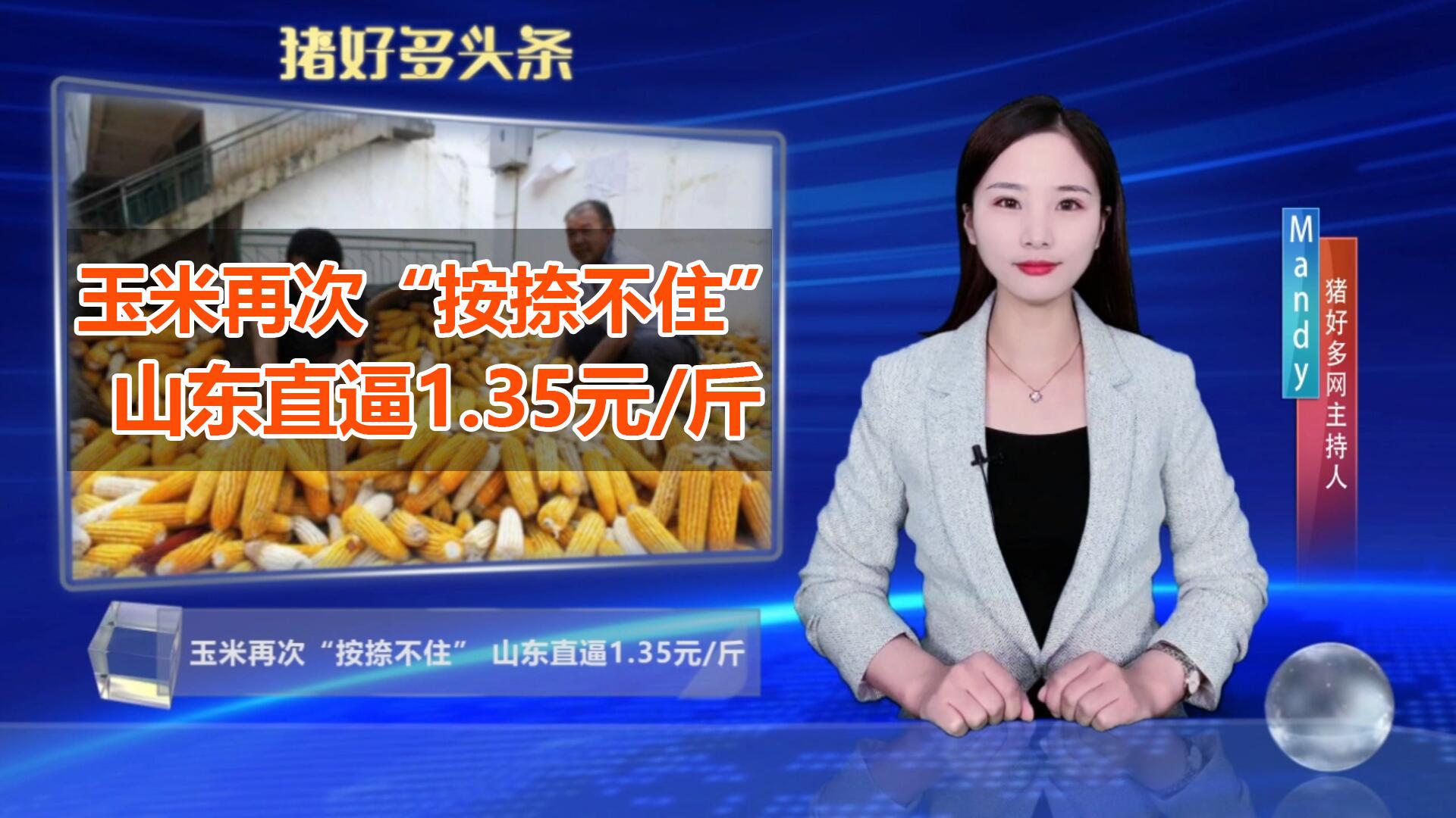 """玉米再次""""按捺不住"""",山东直逼1.35元/斤,该屯粮还是买粮?"""