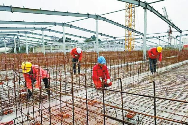 四川仁寿:构建生猪全产业链高质量发展新格局