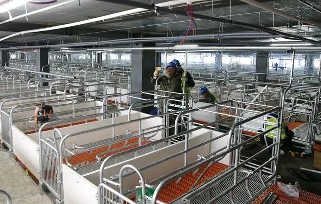 遵义市第一座智能化立体养殖场