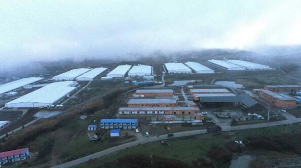 贵州:首批种猪进场,毕节百万头生猪养殖项目投产!