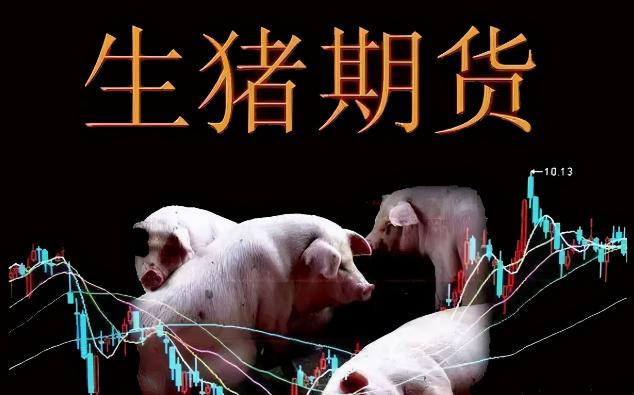 生猪期货新年即将开锣,门槛可谓不低,聊聊生猪期货那点事