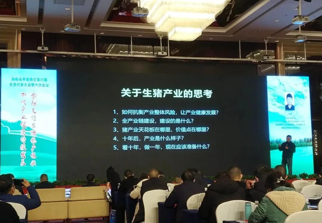 农信互联副总裁王柯:猪市将转变为调猪到调肉、养猪到食品,小型企业消失...