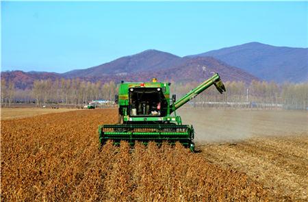 1月7日全国豆粕价格行情,豆粕行情暴涨,单日涨幅继续增高!