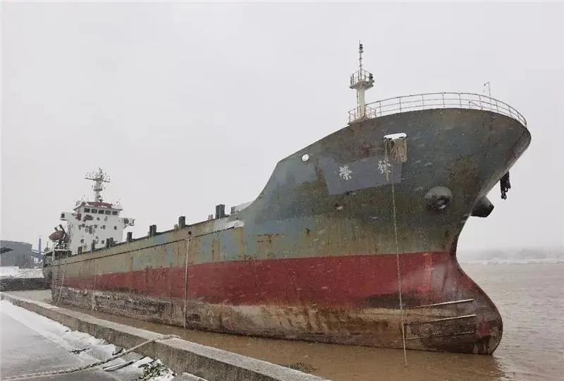 震惊!江苏盐城5000吨大船搁浅空无一人,里面装满走私冻品!