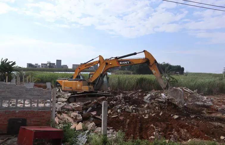 违法占用基本农田,6处养猪场被强拆,猪场老板神色凝重!