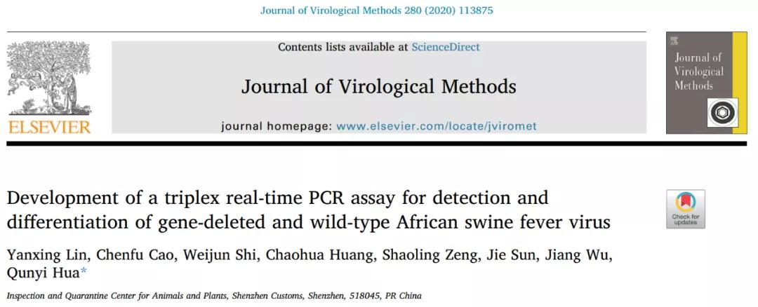 非洲猪瘟双缺失鉴别诊断