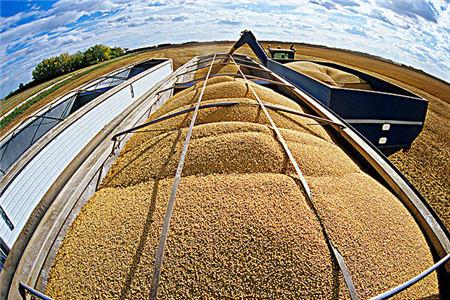 1月12日全国豆粕价格行情,运输难度是目前助推豆粕价格上涨的主因!