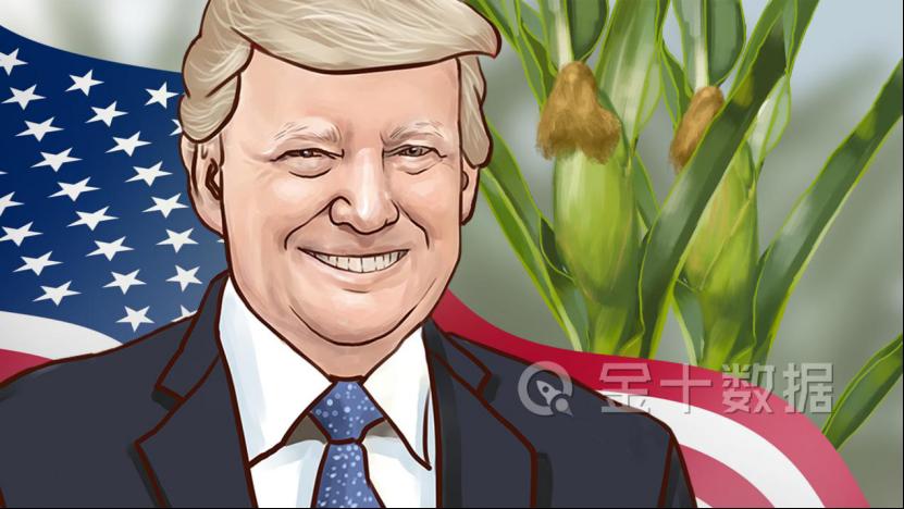 中国或将进口1000万吨玉米!美国玉米价格狂涨,对我国影响却不大