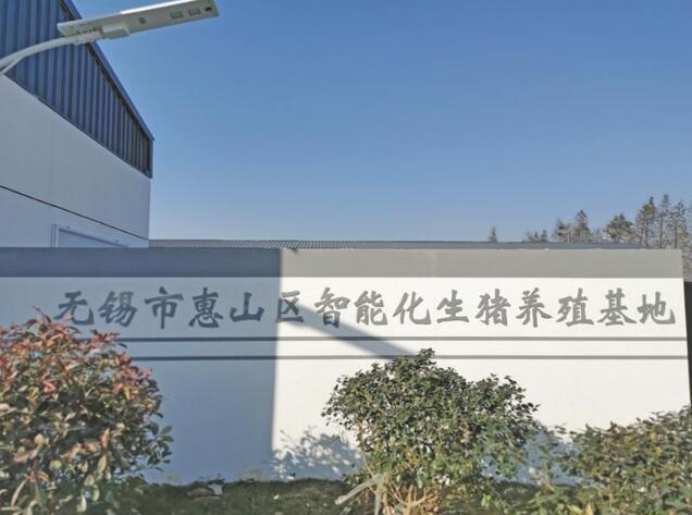 江苏无锡:智能化生猪养殖基地投运 实现无人化饲养 年出栏量超15000头