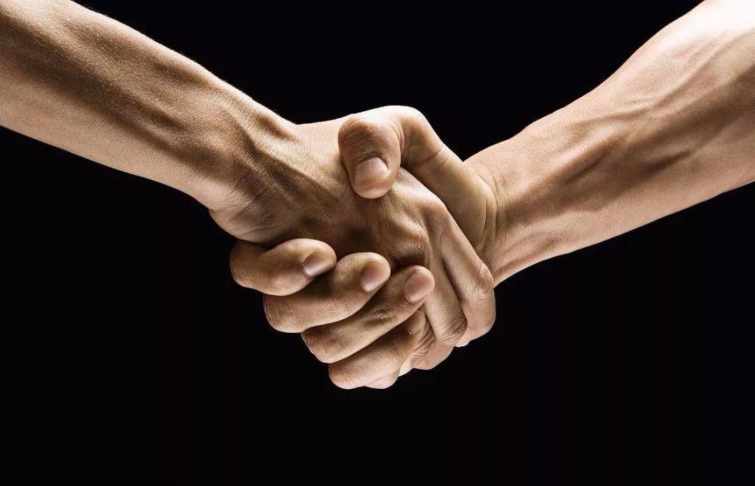 强强联手!华英农业与新希望签约战略合作!