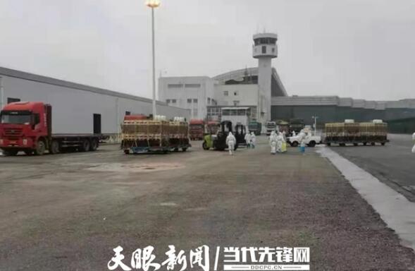贵州:生猪产业素质有提升 规模建设有成效