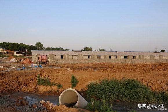 """在农村办个养殖场,关于""""养殖用地""""有哪些要求?这些政策要知道"""