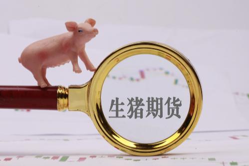 未来中国的生猪期货市场有多大?对比美国,生猪期货前途可期!
