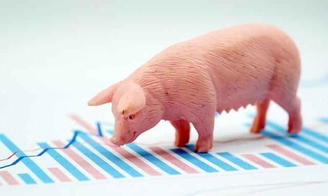 广东湛江生态高效生猪养殖场项目,总投资4亿,年出栏肥猪20万头