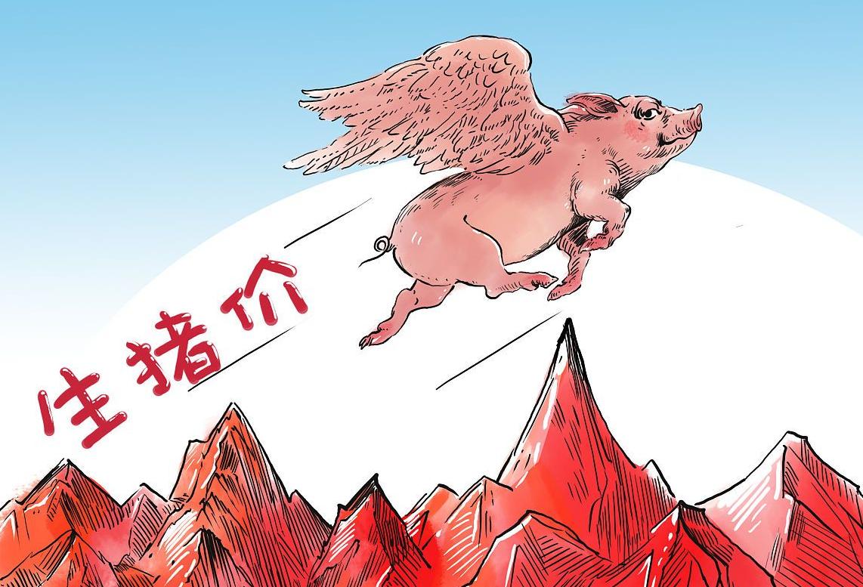 """1.26生猪价格,猪肉消费""""力不从心"""",猪价还能涨到18元?"""
