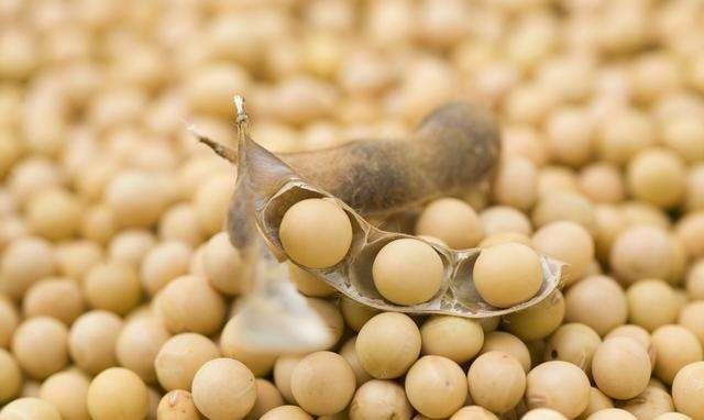 豆粕现货又开始大涨了,就因为南美天气又出问题了,产量减少近一半!