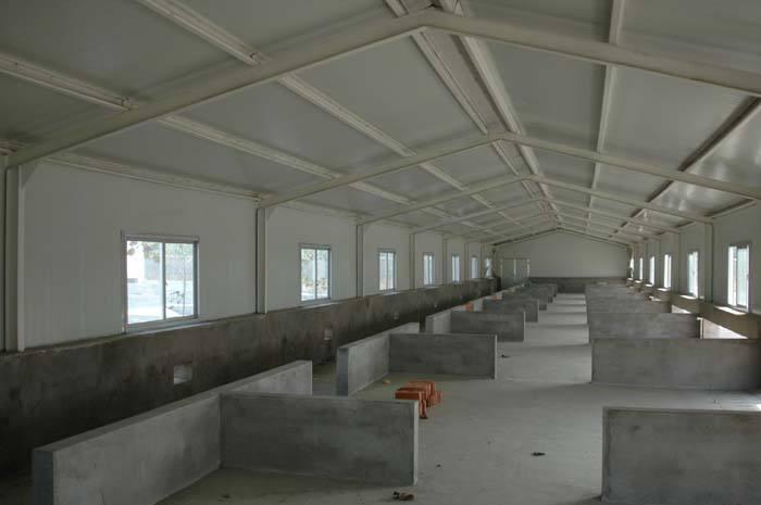 老厂长告诉你猪场怎么建设?合理安排猪场内的建筑!