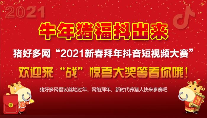 """牛年猪福""""抖""""出来 ——猪好多网2021新春拜年抖音短视频大赛通知(第二轮)"""