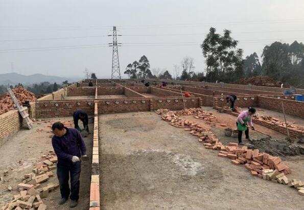 四川:生猪生产稳步恢复,存栏量达正常年份的88.5% !