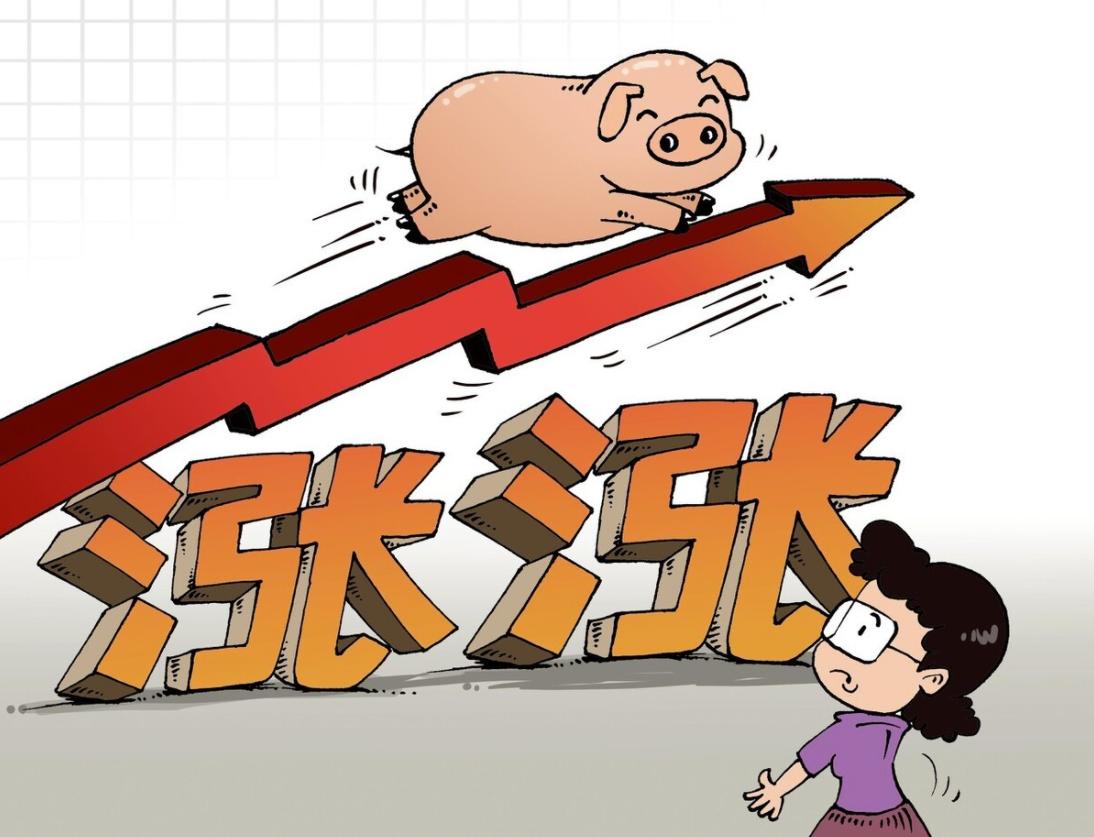 2月1日10公斤仔猪价格,猪价急涨急跌,仔猪补栏时机难以把控