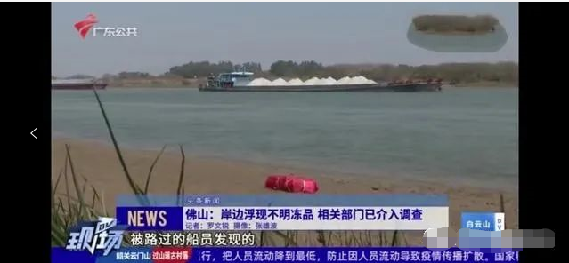 惊悚!佛山水域700公斤不明冻品,来自爆发过新冠疫情的屠宰场?